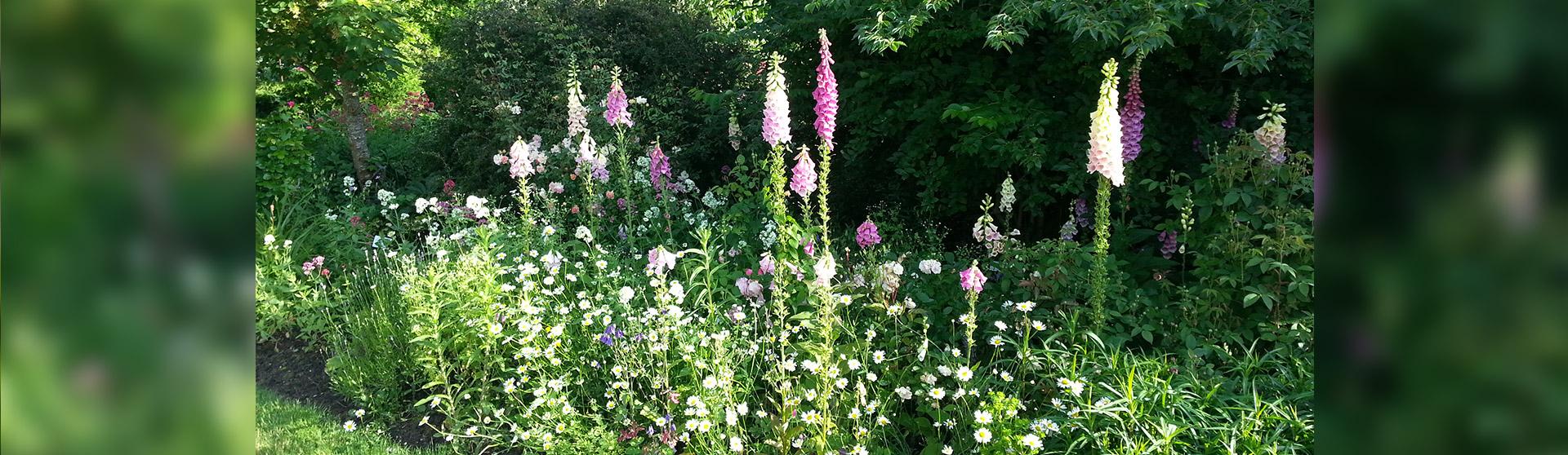 Jardins l anglaise champ tre et romantique jardins for Creation jardin anglais
